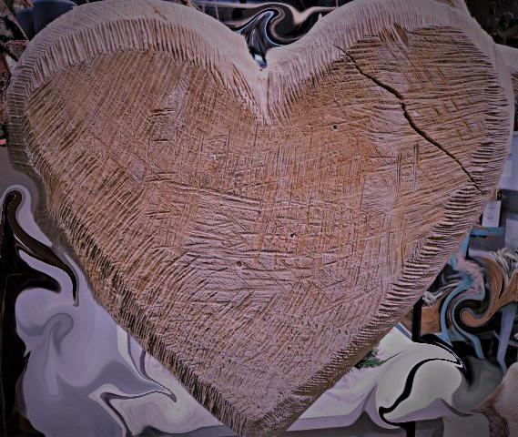 serce duże